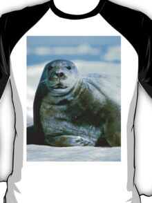 Pretty Bearded Seal T-Shirt