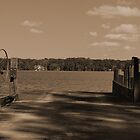 Fort Gates Ferry Landing by Shane Jones