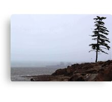 One cool and gloomy morning! Canvas Print