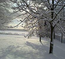 Heavy with Snow by Merice Ewart Marshall - LFA