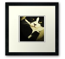 Could you please stop bothering me?... Framed Print