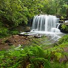 Hunts Creek, Sydney by Malcolm Katon