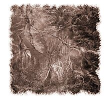 The Atlas of Dreams - Plate 2 Photographic Print