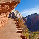 Zion Canyon Trail by Nickolay Stanev