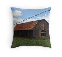 Barn at the Stone County Line Throw Pillow