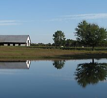 Countryside Reflections by davidsimmons
