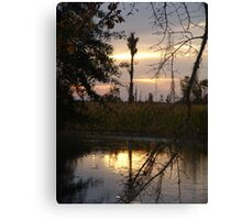 GOLD SPILL Canvas Print