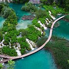 Turquoise-green paradise. Plitvice lakes  by evimagery