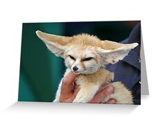 Adorable Fennec Fox Greeting Card