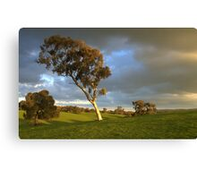 The Sun Breaks Through Canvas Print