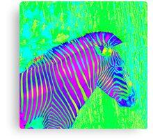 neon zebra 2 Canvas Print