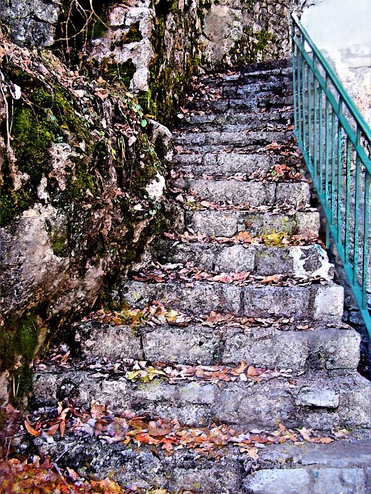 stone stairway by jashumbert