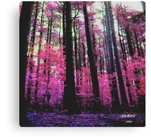 Forest of Fairy Dust Canvas Print