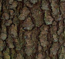 Treebark Art by JinzhaBloodrose
