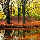 autumn curve by LarsvandeGoor