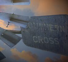Southern Cross by AndyGii