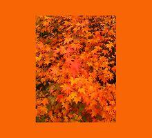 Autumnleaves2 by Robert Munden