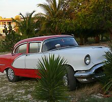 An old car abandoned on the beach, Cuba by krista121