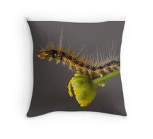 'Where's he gone?'.................... Throw Pillow