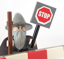 You shall not pass by Tom Milton