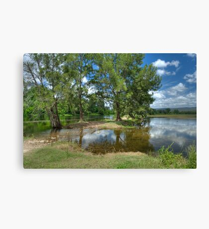 Urban Oasis Canvas Print