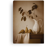 Pears and White Pitcher Canvas Print