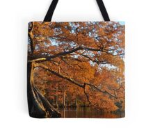 Cypress Fall Tote Bag