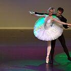 White Romance - Swan Lake by Alfredo Estrella