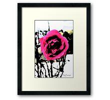 Lone Rose Framed Print