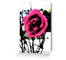 Lone Rose Greeting Card
