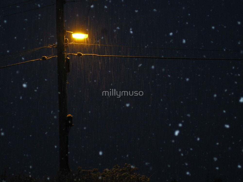 falling snow 7:30am by millymuso