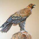 Eagle. Soft pastel. by Norah Jones