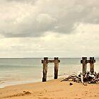 Old livestock jetty by Karen Tregoning