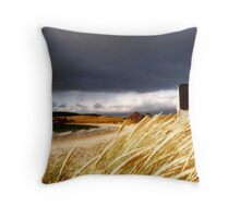 Boat Shed at Opossum Bay, Tasmania Throw Pillow