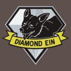 Diamond Ein by Pyier