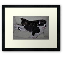 """"""" Babes in toyland dreams """" Framed Print"""