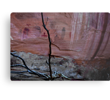 PICTOGRAPHS CANYONLANDS UTAH Metal Print