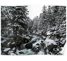 Snow-covered Waters Landscape Poster