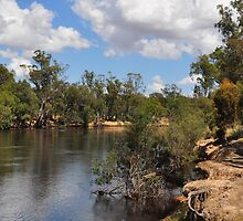 Murray River by Geoff Beck