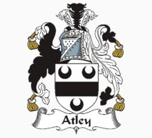Coat of arms (family crest) for last-name or surname Atley . Heraldry banner for your name. by rita24