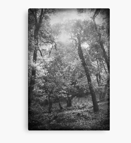 Someday You And Me Canvas Print