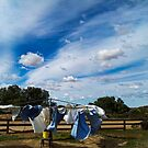 Drying the Clothes - Tibooburra by Malcolm Katon