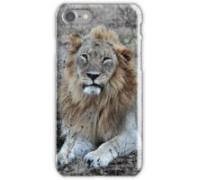 Life with the Lions - Wake Up Call! iPhone Case/Skin