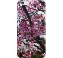 Blossoms up Close iPhone Case/Skin