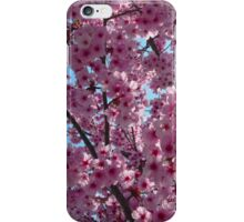 Blossoms up Close 4 iPhone Case/Skin