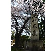Spring in Japan Photographic Print