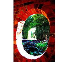 Observation Photographic Print