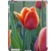 Bold and Beautiful iPad Case/Skin