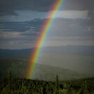 Colors Of A Storm - Northern Alaska by Melissa Seaback