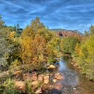 Sedona Secrets by Diana Graves Photography